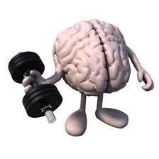 Gehirn Training