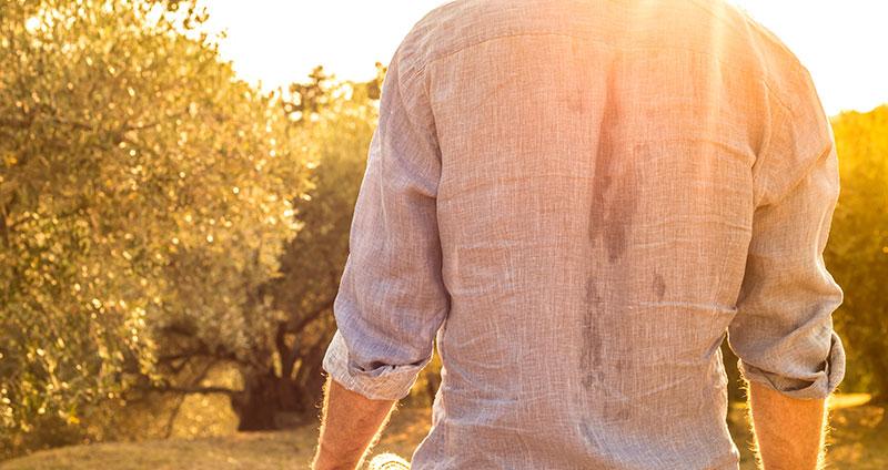 Starkes Schwitzen am Rücken